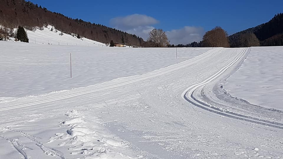 Cross-country skiing trail - Mijoux - Monts-Jura resort