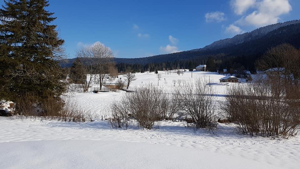 Residences Les Tavaillons - winter season